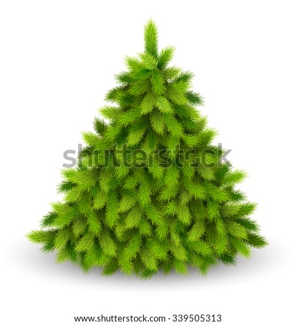 Christmas Tree Pine Isolated on White Background - stock vector