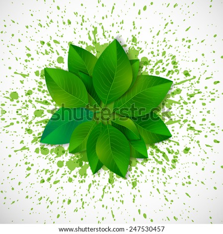 Circle of fresh green leaves on white background with bright green splashes.  - stock vector