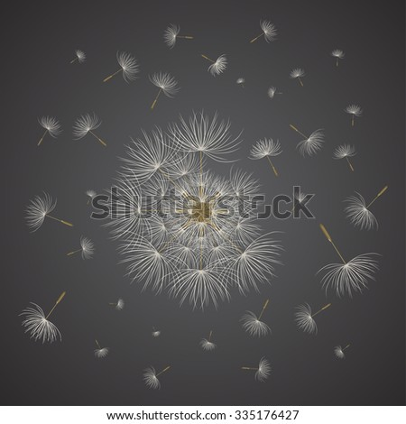 Close-up of abstract dandelion with sparse of seed on the dark background. Vector illustration for graphic design. - stock vector