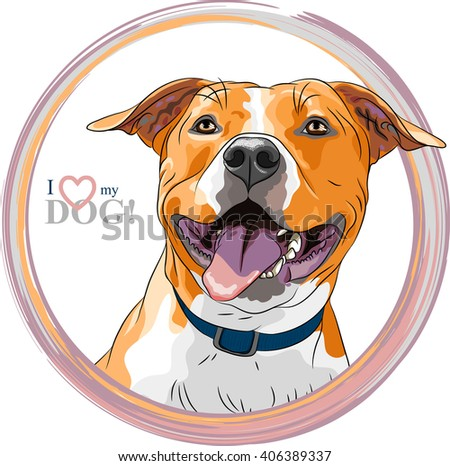 closeup portrait of the smiling dog American Staffordshire Terrier breed - stock vector