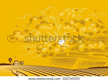 Clouds over fields. Vector - stock vector