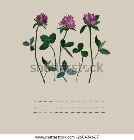 Clover flowers notebook - stock vector