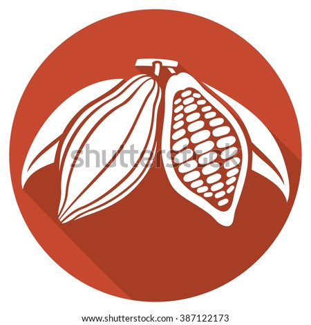 cocoa beans flat icon - stock vector