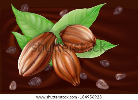 Cocoa fruit and grains on the leaves of a chocolate background - stock vector