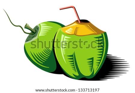 Coconuts-vector - stock vector