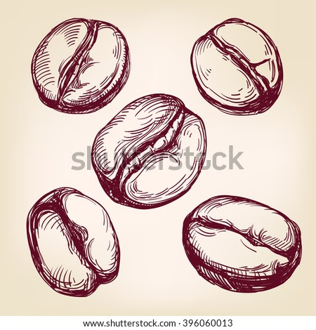 coffee beans set hand drawn vector llustration realistic sketch - stock vector