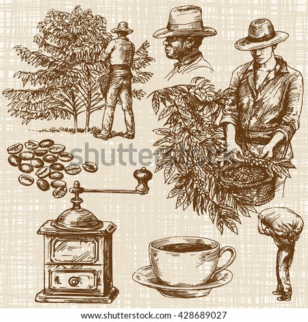 Coffee farmer picking red coffee beans on coffee tree. - stock vector