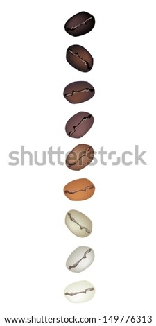 Coffee Time, An Illustration Various Kind of Roasted Coffee Beans in A Vertical Row Isolated on White Background  - stock vector