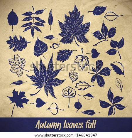 collection beautiful brushstroke autumn leaves on paper background - stock vector