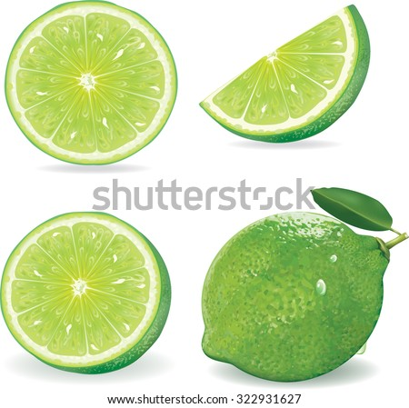 Collection Fresh lime and slice, Isolated on white background.vector - stock vector
