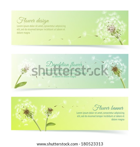 Collection of banners and ribbons with summer dandelion and pollens design elements isolated vector illustration - stock vector