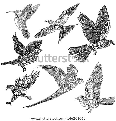 Collection of birds  - stock vector
