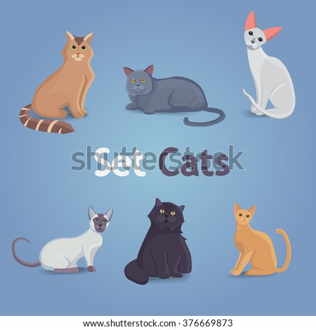 Collection of Cats of Different Breeds. Set cats.Cat with cute faces.Cartoon colection of isolated cats. - stock vector