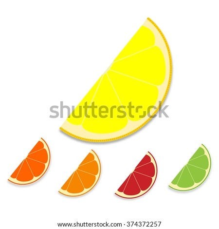 Collection of citrus slices: orange, lemon, lime and grapefruit - stock vector