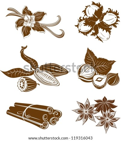 Collection of  dessert ingredients. Hazelnuts, Cocoa beans, Vanilla pods, Anise, and Cinnamon isolated on white - stock vector