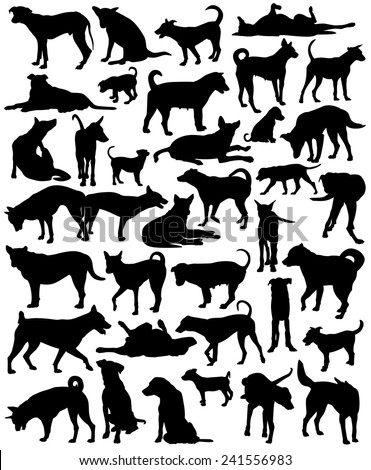 Collection of editable vector silhouettes of a motley group of Bangkok street dogs - stock vector
