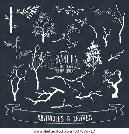 Collection of hand drawn tree branches and leaves silhouettes. Isolated vector. - stock vector