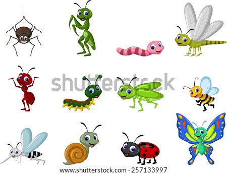collection of insects cartoon - stock vector