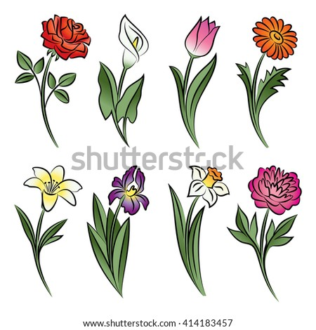 Collection of outlined flowers. Calla, rose, tulip, lily, peony, narcissus, iris and daisy In sketch hand drawn style. Vector illustration - stock vector