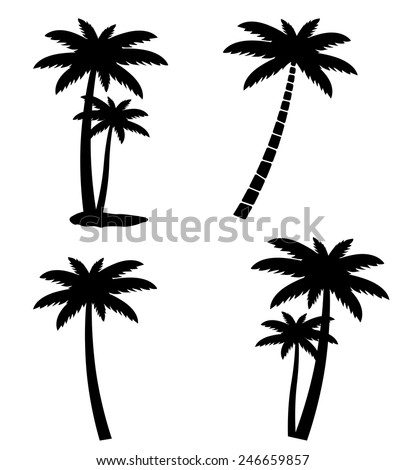 Collection of palm trees isolated on white background, vector illustration - stock vector