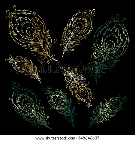 Collection of peacock feathers - stock vector