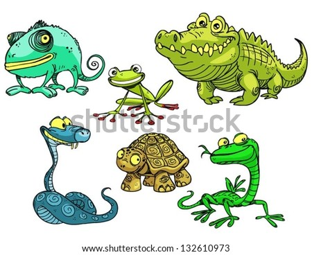 Collection of reptiles and amphibians - stock vector
