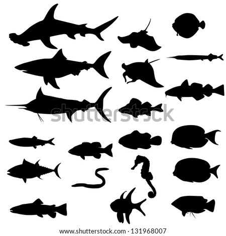 Collection of saltwater fishes isolated on white (Vector) - stock vector
