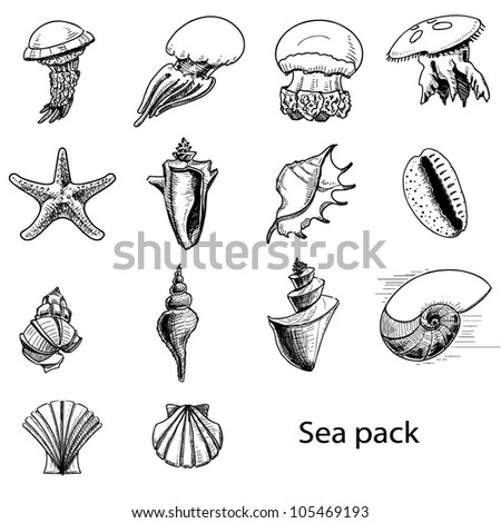 Collection of sea animals. Hand drawing sketch vector illustration - stock vector