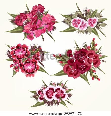 Collection of vector  pink flowers in detailed and realistic style - stock vector