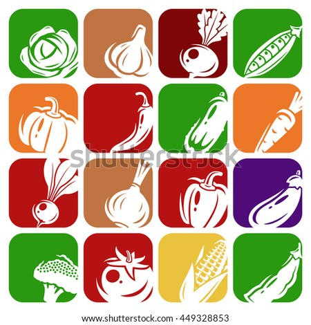 Collection of vegetables set. Vector illustration - stock vector