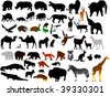 collection of wild animals vector silhouettes - stock vector