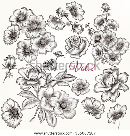 Collection or set of hand drawn beautiful flowers in engraved vintage style - stock vector