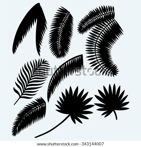 Collection set of palm leaves. Isolated on blue background. Vector silhouettes - stock vector