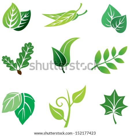 Color images set with leaves - stock vector