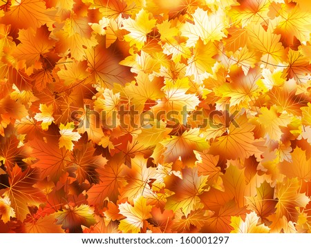 Colorful and bright background made of fallen autumn leaves. And also includes EPS 10 vector - stock vector