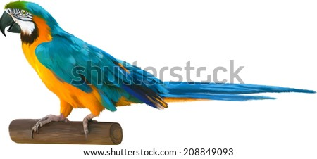 Colorful blue parrot macaw isolated on white background - stock vector