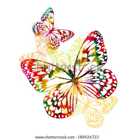 colorful butterflies . Vector - stock vector