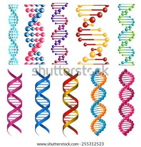 Colorful DNA molecules showing the helical structure or twisted spiral decorative patterns in seamless vertical patterns for borders and frames - stock vector