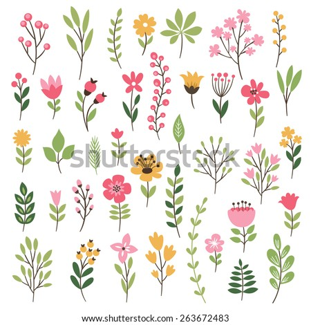 Colorful floral collection with leaves and flowers - stock vector