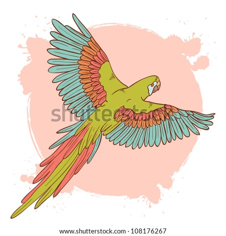 Colorful hand drawn ara parrot flying isolated on a grunge background - stock vector