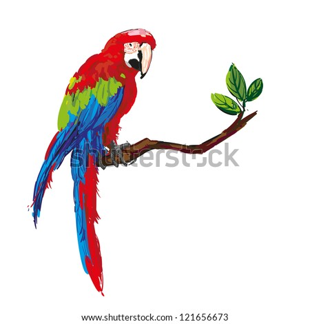 colorful parrot isolated in white background vector illustration - stock vector