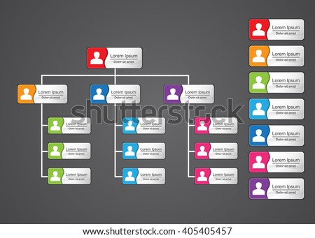 Colorful Rectangle Organization Chart Infographics with People Icon and Abstract Line, Business Structure, Vector Illustration. - stock vector