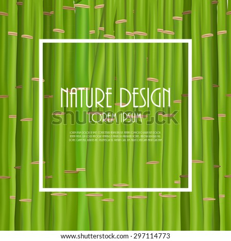 Colorful Stems and Bamboo Leaves Background. Vector Illustration. EPS10 - stock vector