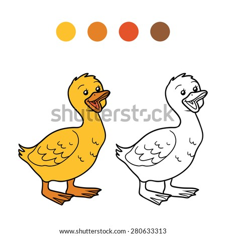 Coloring book (goose, gosling) - stock vector