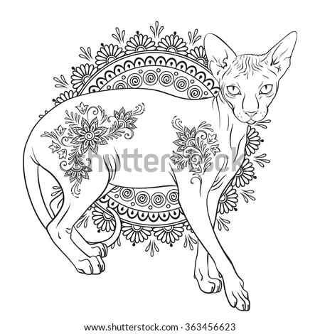 Coloring book pages for kids and adults. Hairless sphynx cat with mehndi ornaments isolated vector illustration - stock vector
