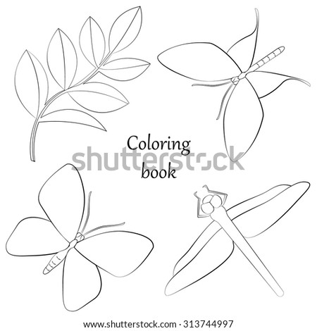 Coloring book with insects and plant - stock vector