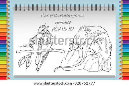 coloring page with isolated objects of bird on a branch and lizard on a rock - stock vector