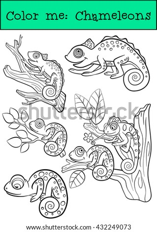 Coloring pages: Chameleons. The set of some little cute happy chameleons. - stock vector
