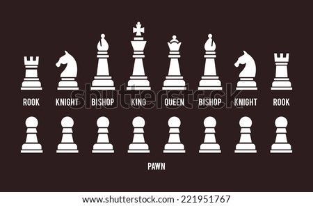 Complete set of all sixteen chess pieces arranged in two rows with the pawns below  white silhouette vector icons on black with each piece named and identified - stock vector