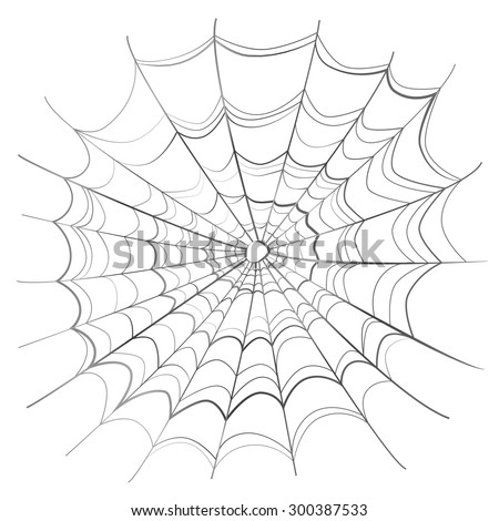 Complicated scary spider web isolated on white - stock vector